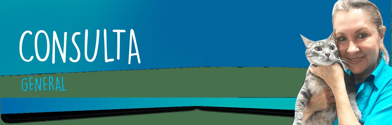 CONSULTA-GENERAL-ZAMUDIO-022018