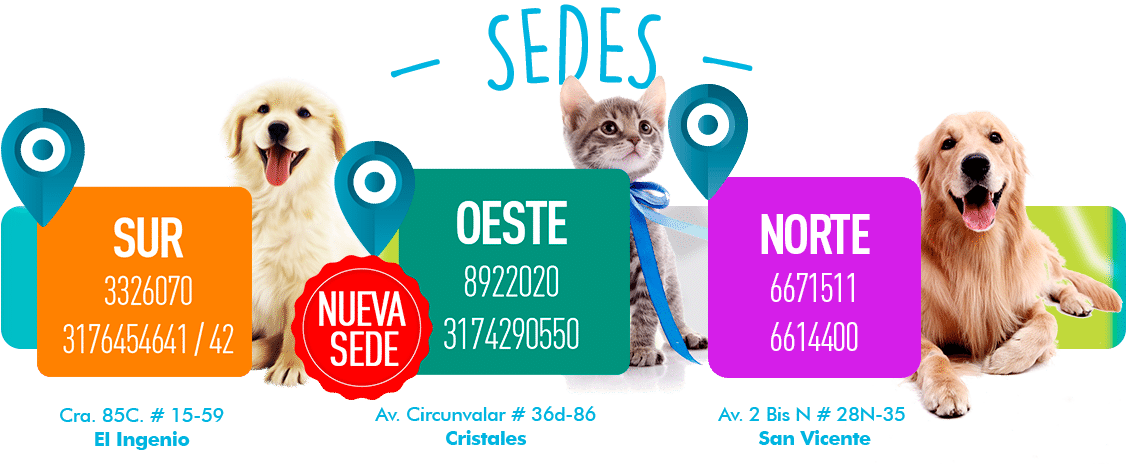 SEDES-HOME